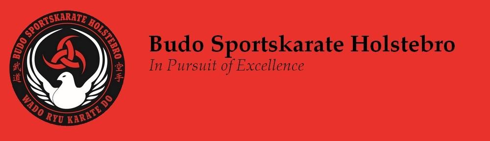 Budo Sportskarate Holstebro